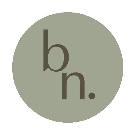 balancenorth logo